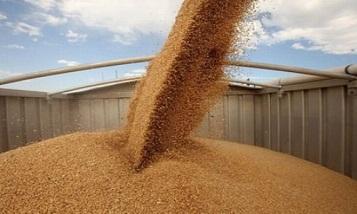 Սեպտեմբերի 1-ից հացահատիկի բեռների փոխադրումների սակագները Փոթի-ՀՀ հաղորդակցությունում նվազում են 52%-ով